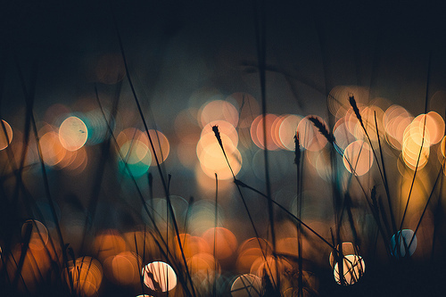 beautiful-bokeh-photography-Favim.com-456643.jpg