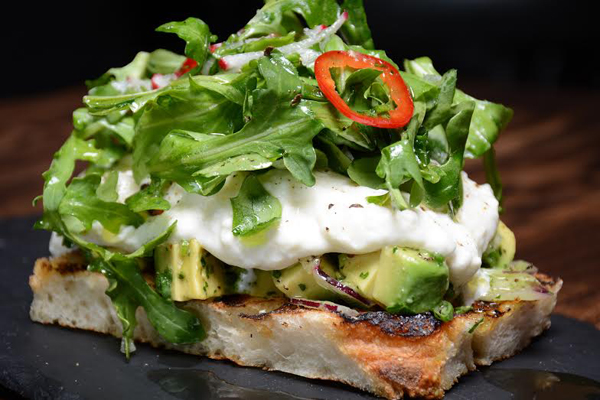 The Corner Door, fresh burratA, warm toasted bread with avocado, olive oil, sea salt and radish, The Corner Door in Culver CitY, Avocado toast culver city, los angeles avo toast, girl loves food, song millions of peaches