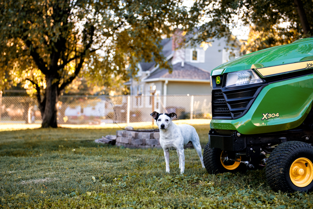 Johndeere deere dog fall terrier grass