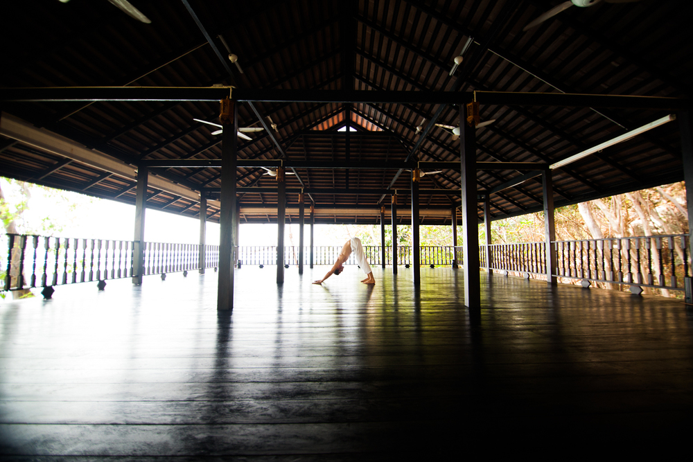 big sala 2.jpg