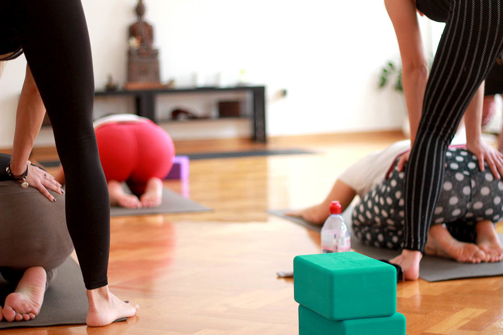 vinyasa teacher training zagreb