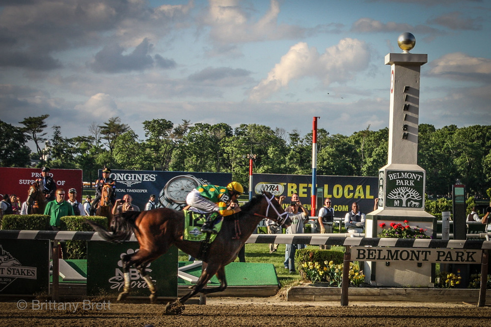 """The 2013 Belmont Stakes resulted in Palace Malice beating the odds to steal the show from Kentucky Derby champ Orb and Preakness Stakes champ Oxbow."" - David Daniels"