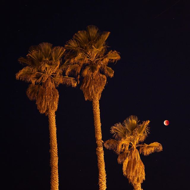 Earliest  #losangeles #bloodmoon #supermoon #lunareclipse
