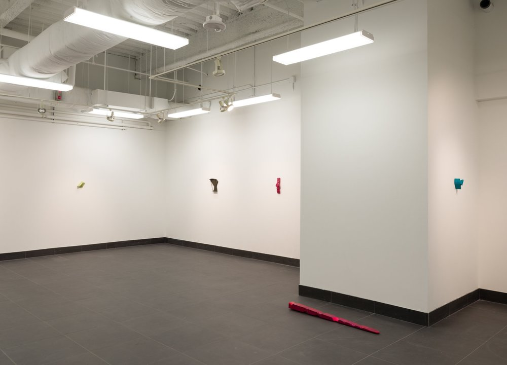 exhibition at Texas State Galleries, 2017
