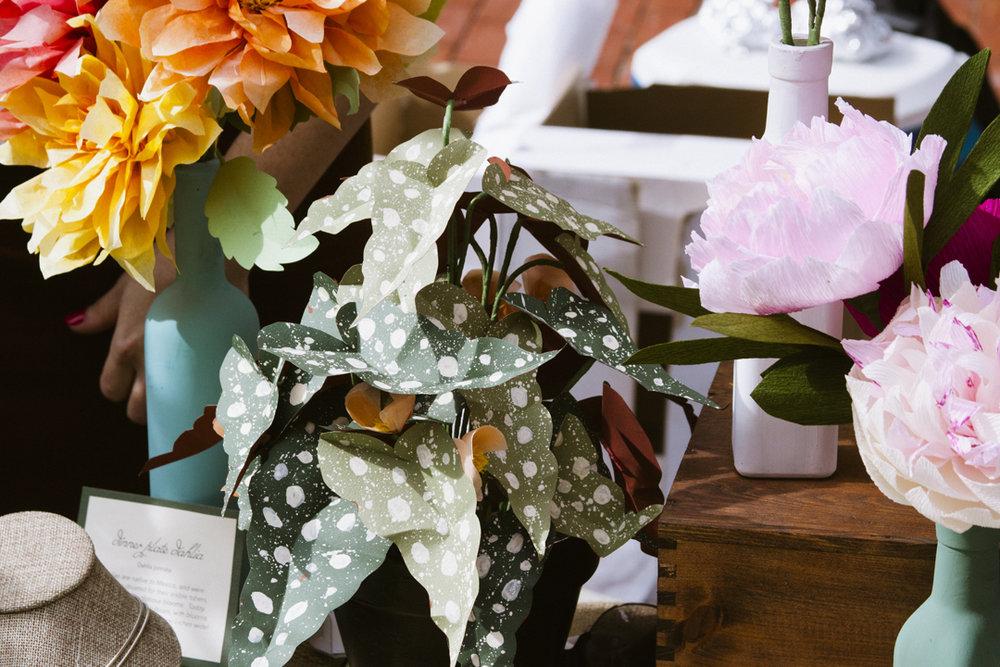 Folium  paper flowers