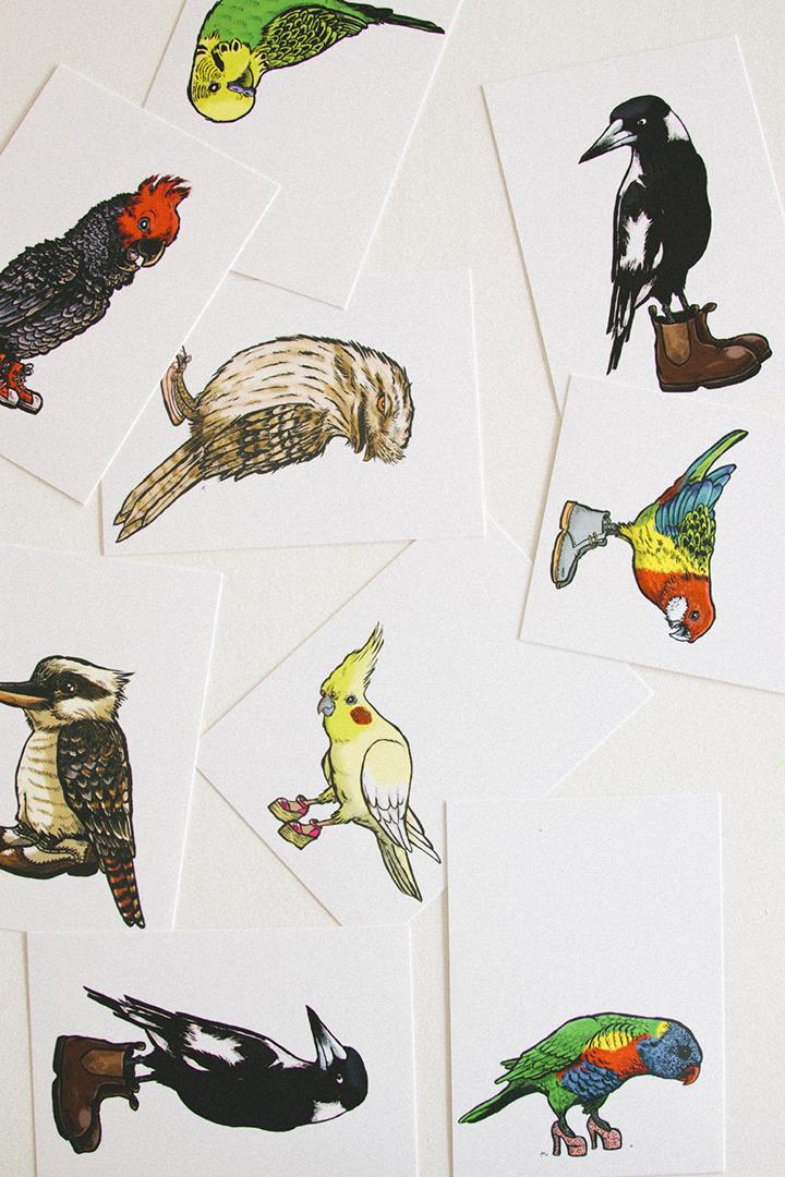 Greiner_Birds_Cluster.jpg
