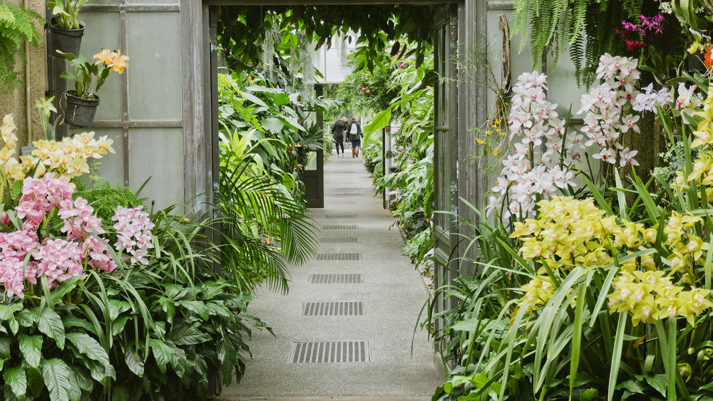 Longwood Gardens on the Print Club Ltd. Journal