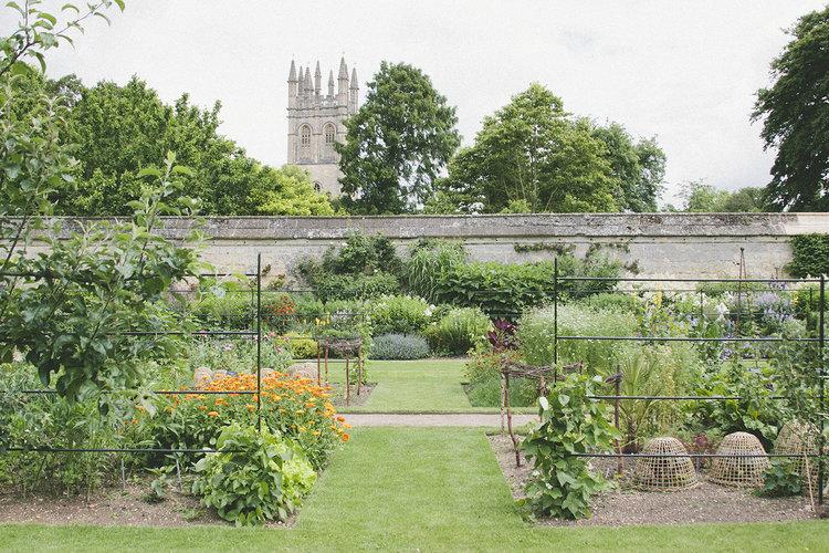 Print Club Visits The Oxford Botanic Gardens — Print Club Ltd.
