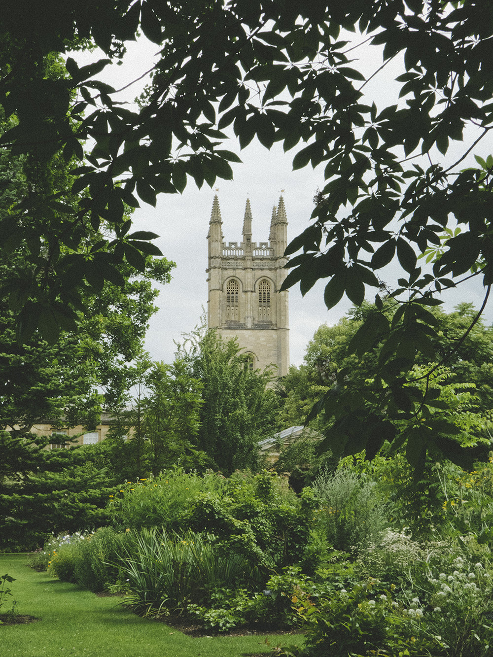 Print Club visit the Oxford Botanic Gardens | Print Club Ltd. Journal