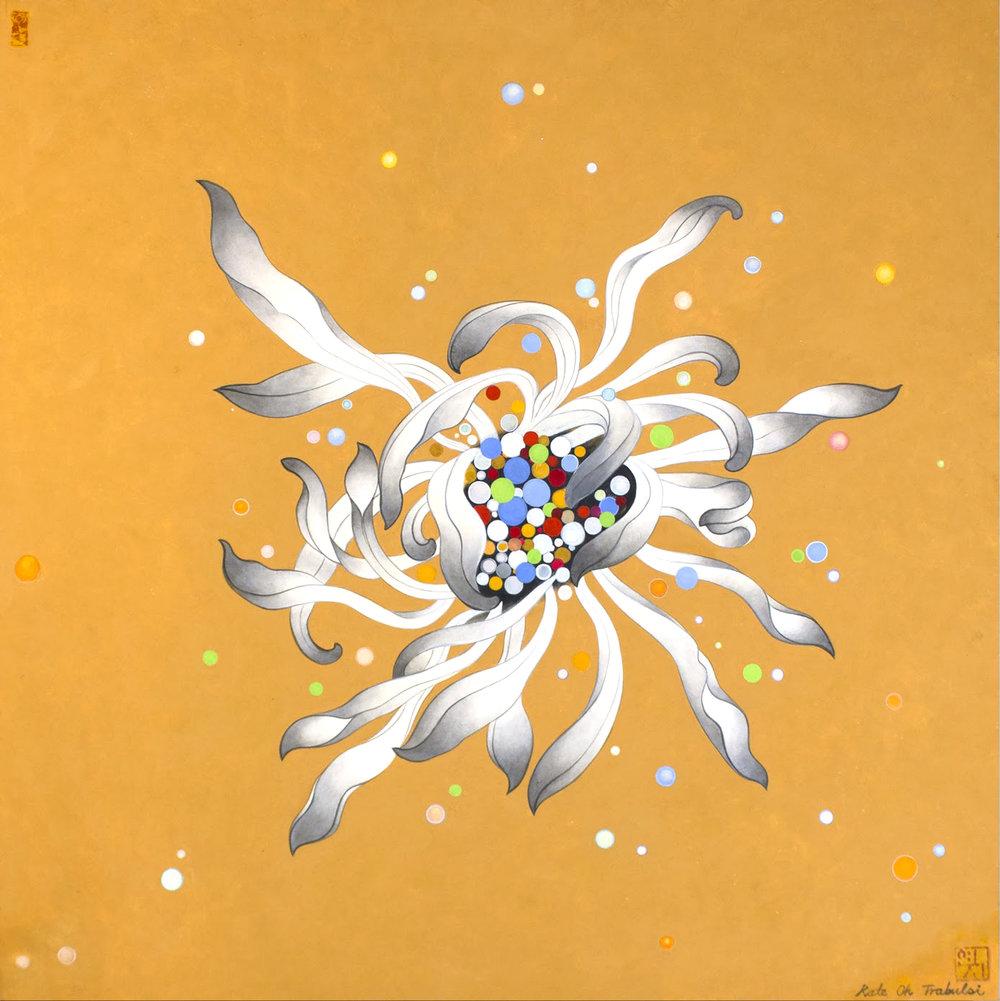 Chrysanthemum Series (Orange)  Acrylic on Hanji Paper over wooden panel  24 x 24 inches 2017   Inquire