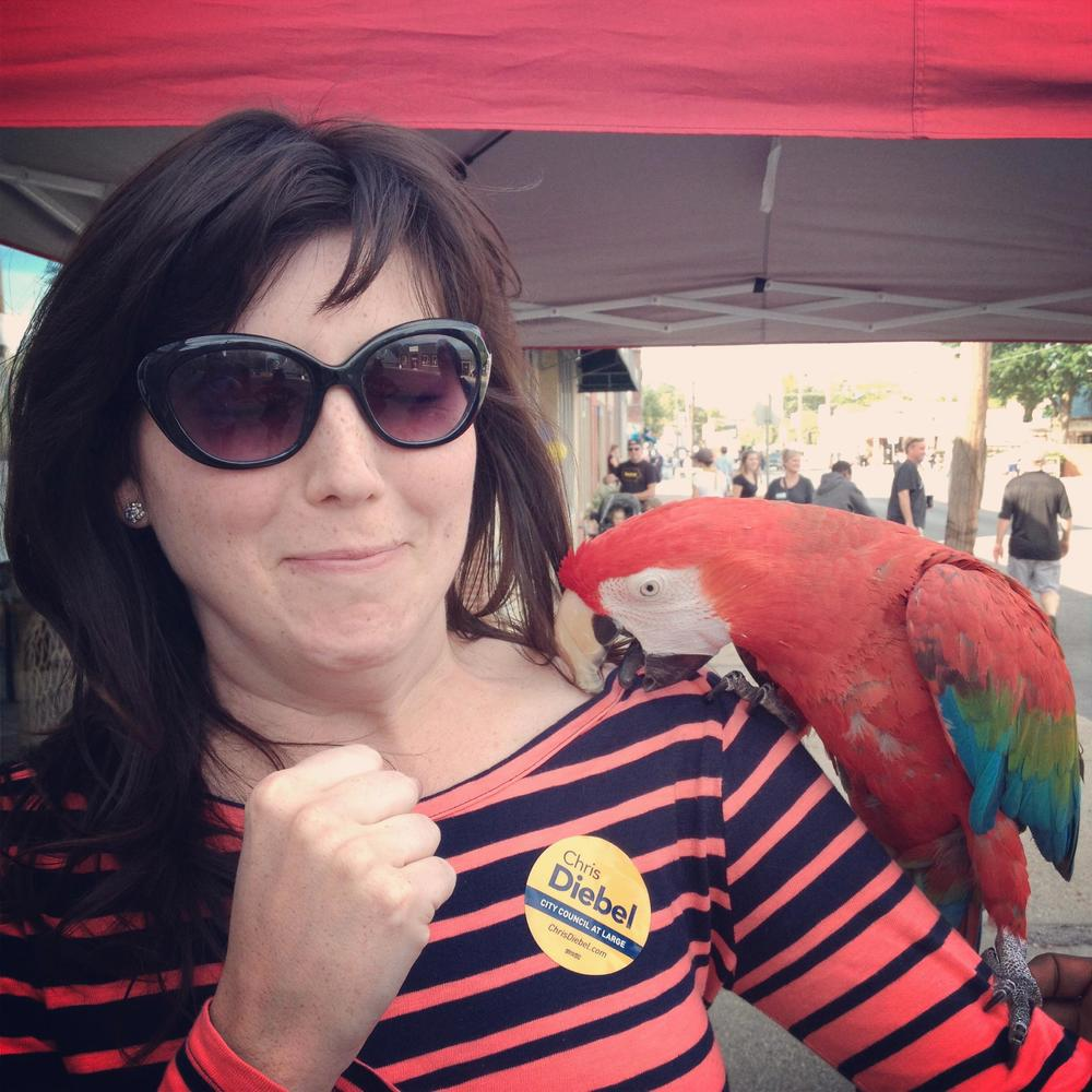 I am not about to punch the parrot. Although I semi-hate birds (pigeons especially), I don't wish them any harm. This is not me preparing to right hook. I'm actually clenching my fist in fear. And triple chinning in fear. And voting for Chris Diebel.