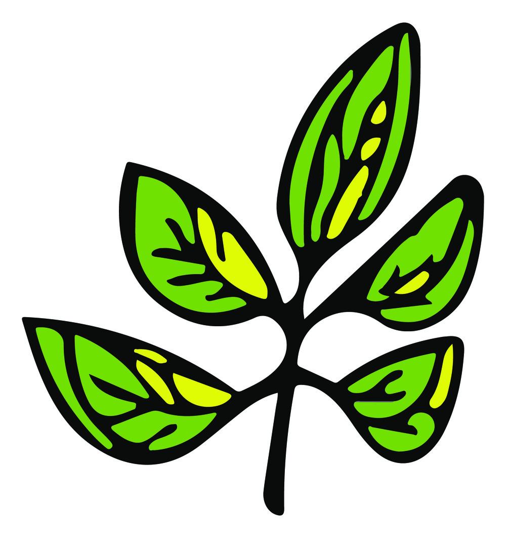 Leaf twig.jpg