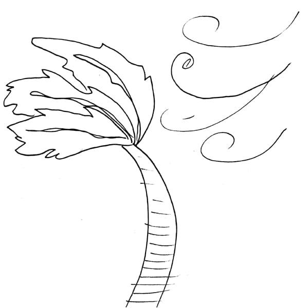 palm sway.jpg