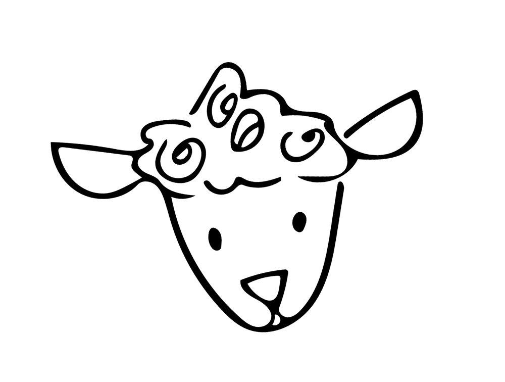 lil sheep.jpg