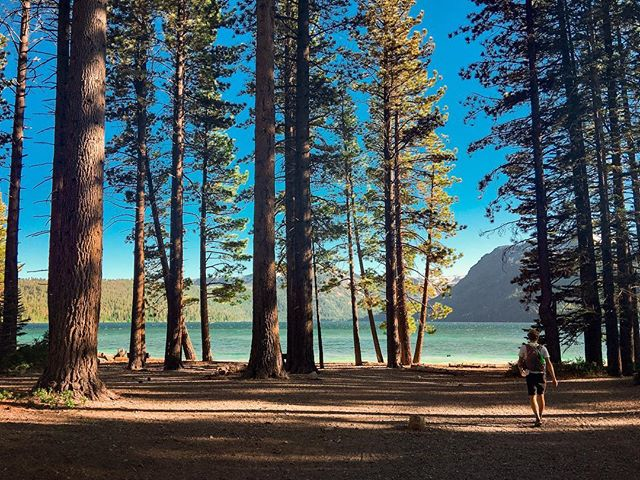 Fallen Leaf Lake 🏃 #tahoe #california #beach #laketahoe 📸 @aubrey.garner