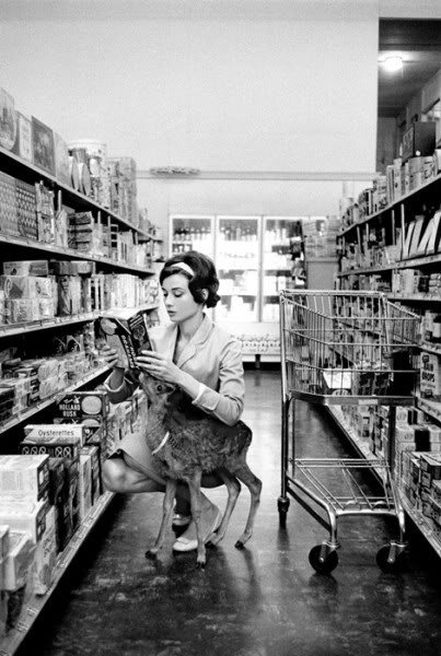 Audrey Hepburn and pet fawn