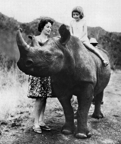 girl riding rhino