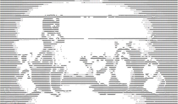 ASCIIRaccoons.png