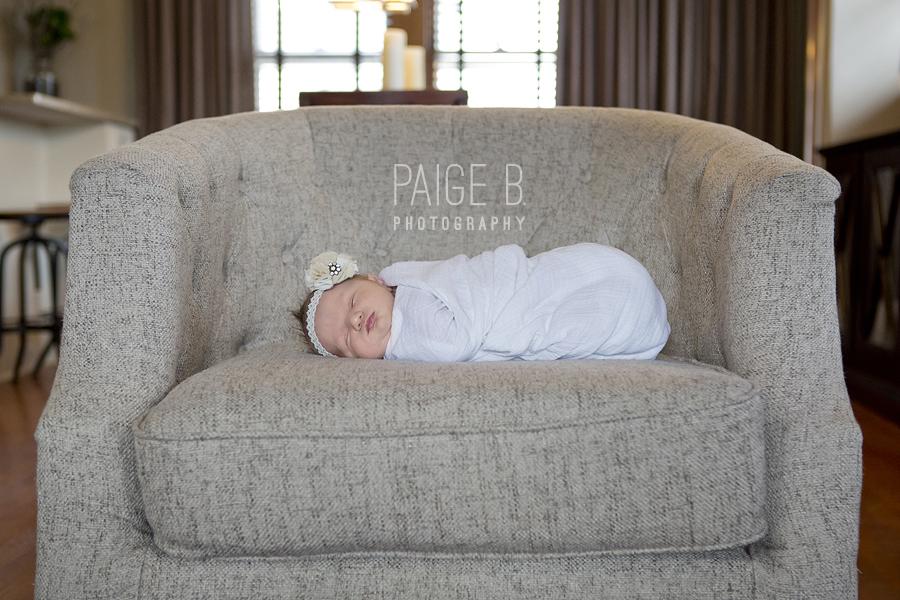 BabyViolet05.jpg