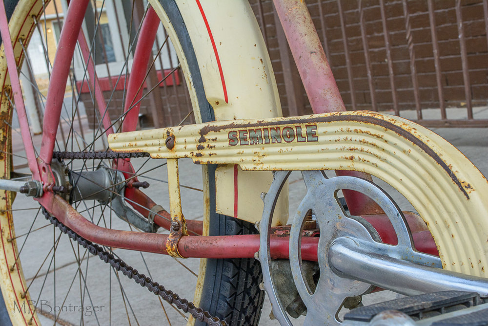 original chainring with chain