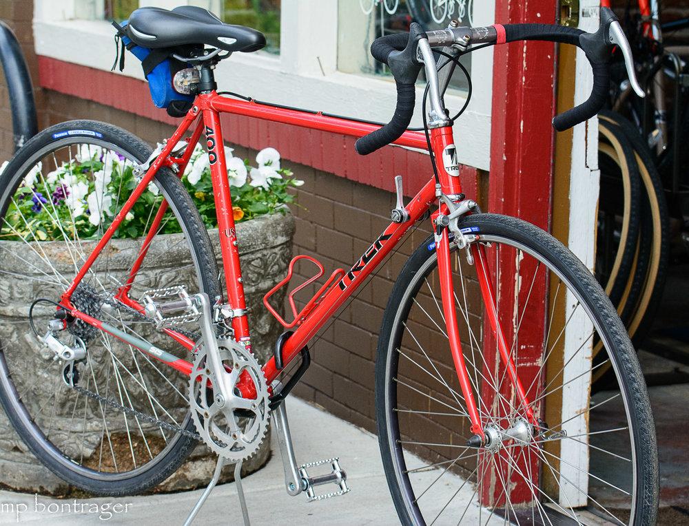 lugged steel Trek road bike