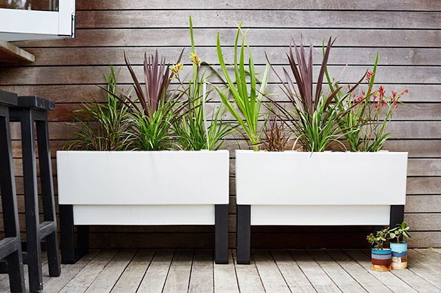 Including some indoor plants in your decor don't only look good - they can make you feel good too. Studies show a bit of inside greenery can help reduce stress, boost creativity and increase optimism - the more the better we say! . . . .  #selfwatering #selfwateringplanter #balconyplanter #glowpearplanter #summerplanting #whattoplant #greenwall #growvertically #verticalgarden #smallspacegardening #growyourown #locallygrownfood #ediblegardening #urbangardening #greenthumb #permaculture #goinggreen #foodisfree #homegrown #gardenersofinstagram #inmygarden #instafarm #plantstagram #gardenknowhow #gardenhelp #gardenadvice #produce #summer #kitchengarden #homegrown