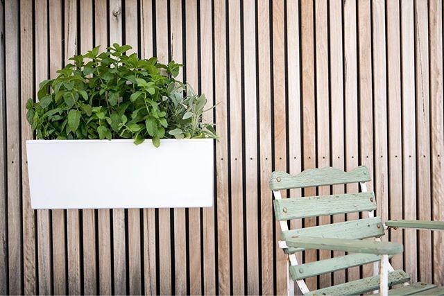 Nothing better than enjoying a mini-meditation and pulling up a chair next to your urban garden. Where's your favourite spot to sit and relax? . . . .  #selfwatering #selfwateringplanter #balconyplanter #glowpearplanter #summerplanting #whattoplant #greenwall #growvertically #verticalgarden #smallspacegardening #growyourown #locallygrownfood #ediblegardening #urbangardening #greenthumb #permaculture #goinggreen #foodisfree #homegrown #gardenersofinstagram #inmygarden #instafarm #plantstagram #gardenknowhow #gardenhelp #gardenadvice #produce #summer #kitchengarden #homegrown