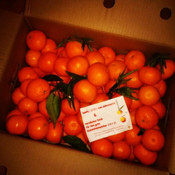 Mandarines_2013.jpg
