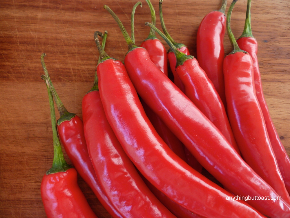 Mild red chillies