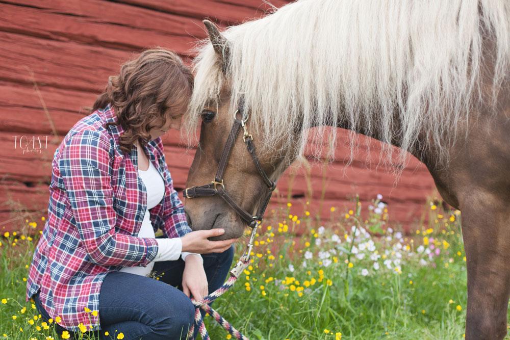 Lemmikkikuvaus hevosen kanssa Lapissa