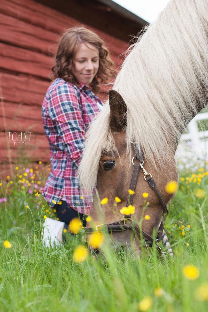 Hevonen ja omistaja heinikolla