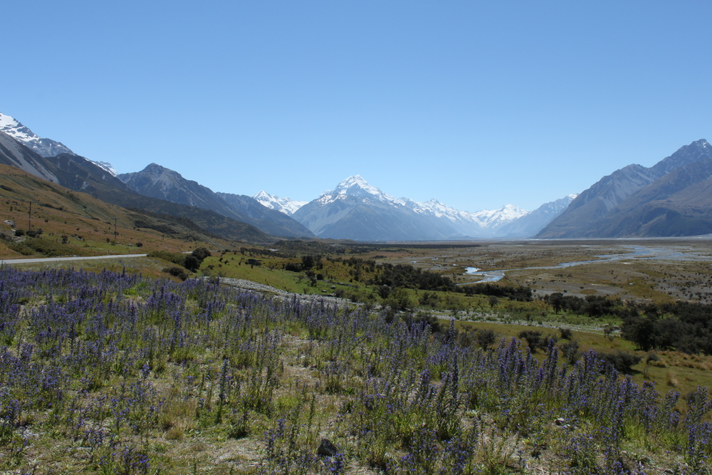 The valley leading up to Mount Cook.