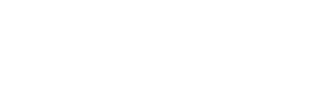 Snyder Companies Logo Final.png
