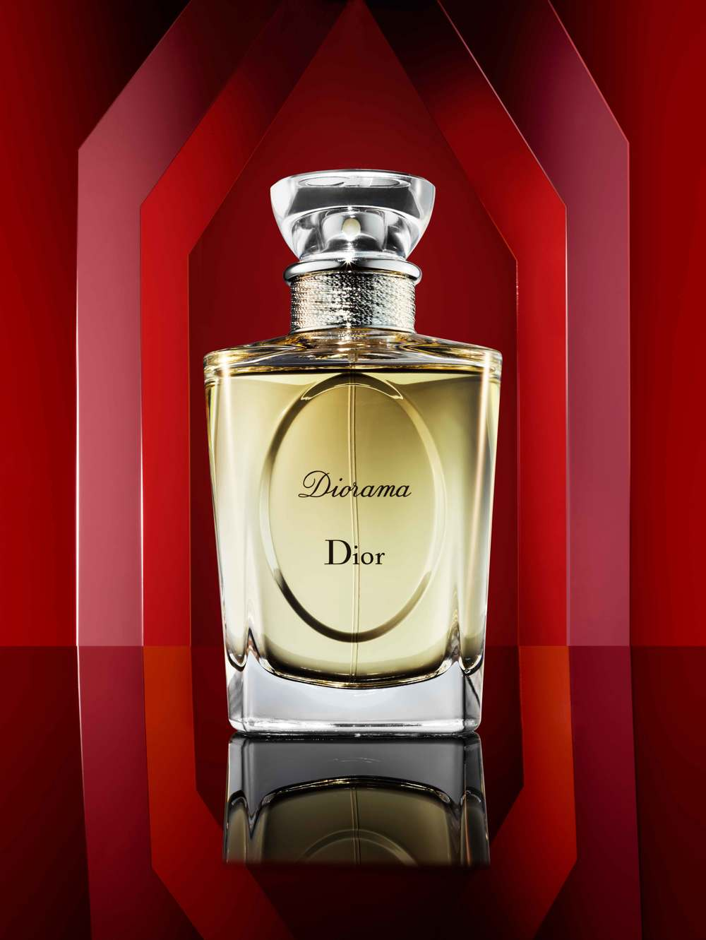 Dior_871c copy.jpg