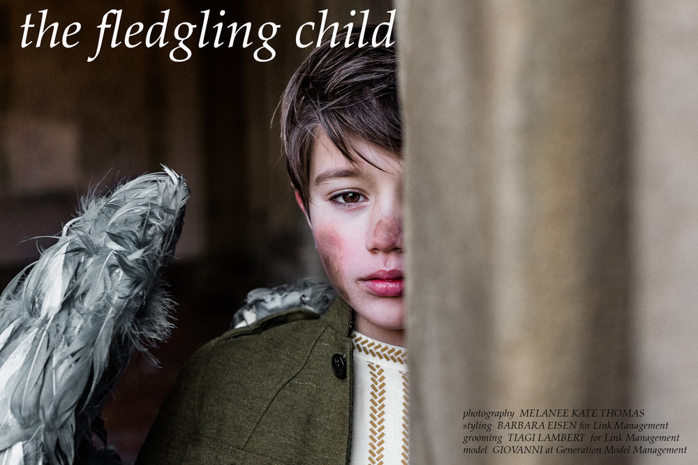 The Fledgling Child Spread 1a.jpg