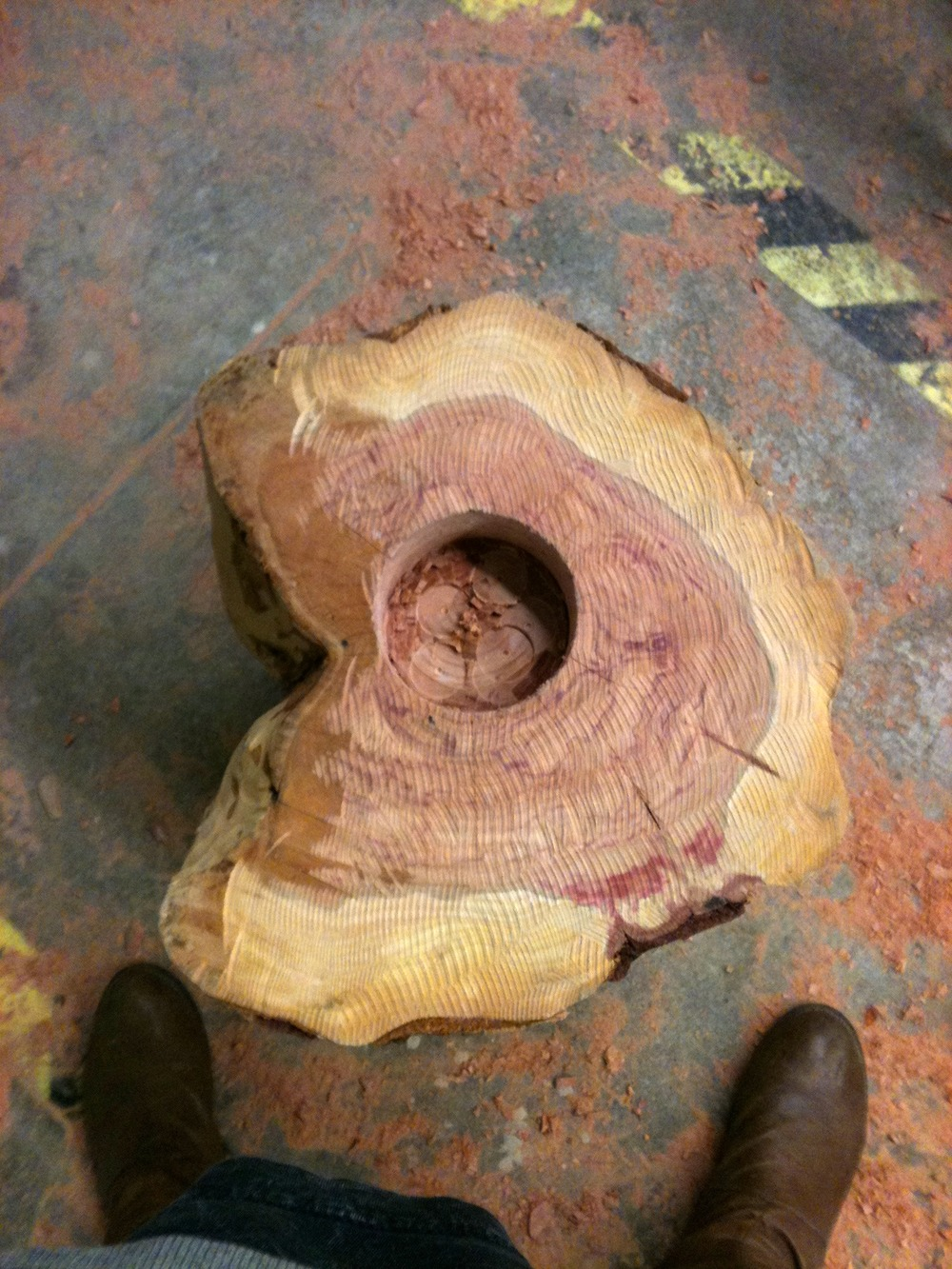 Base after initial bark removal, carving, and bore hole.