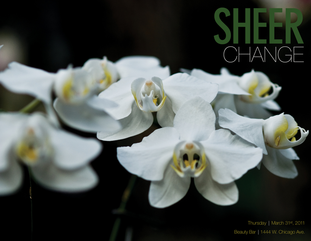 SHEERChangeBrochure_Front.jpg