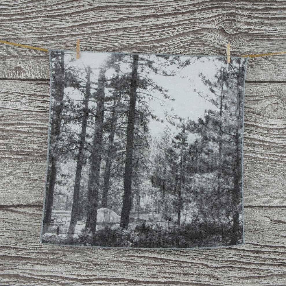 Napkin woods 1.JPG