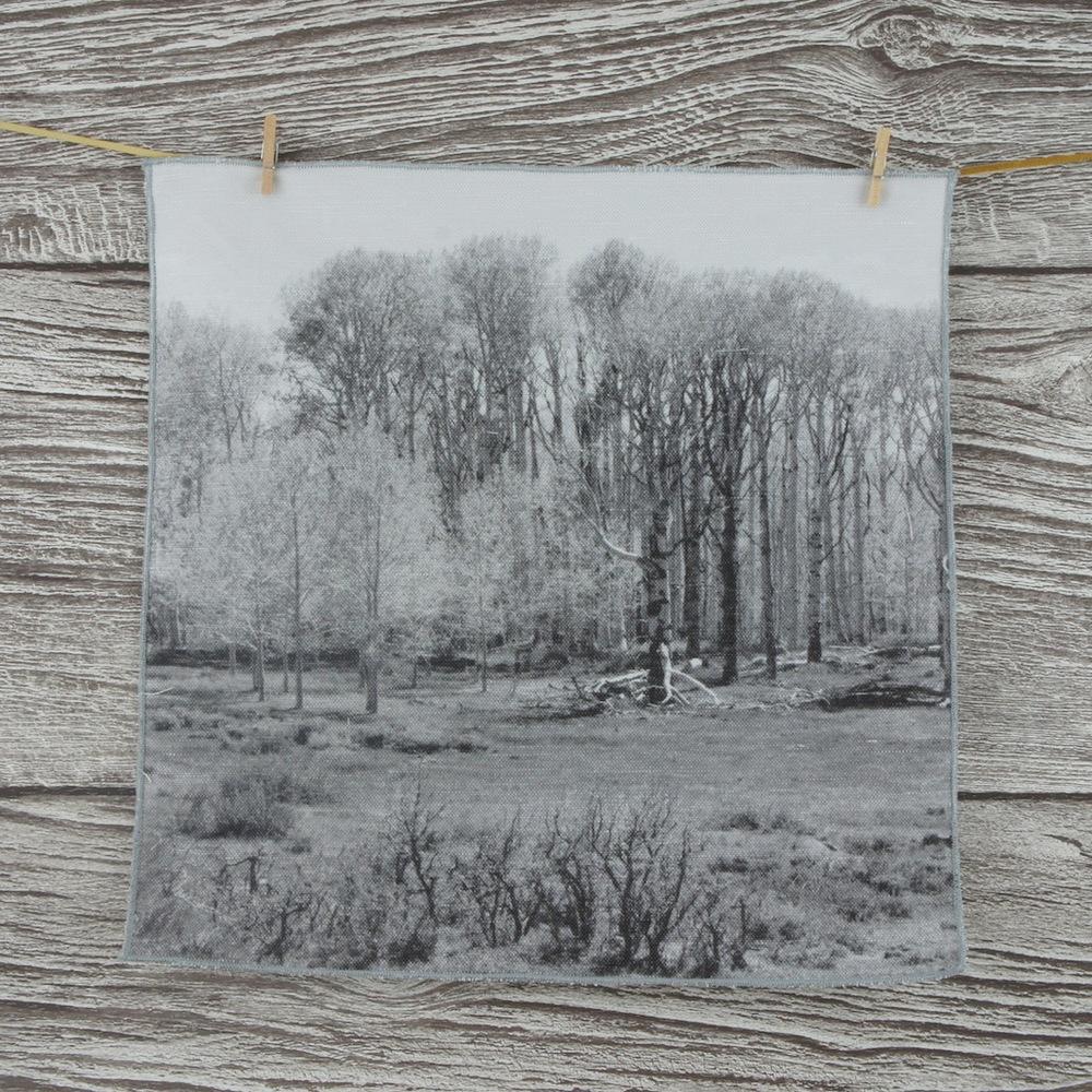 Napkin woods 2.JPG
