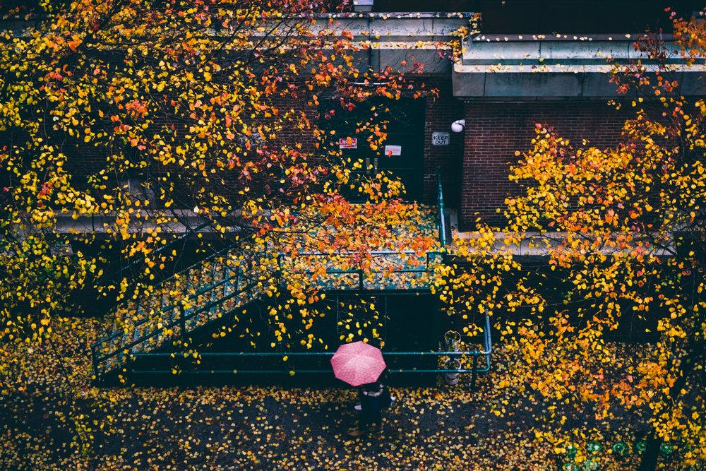 Manhattan_DSCF2605.jpg