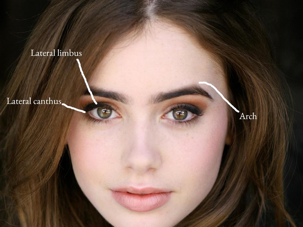 What makes Lily Collin...