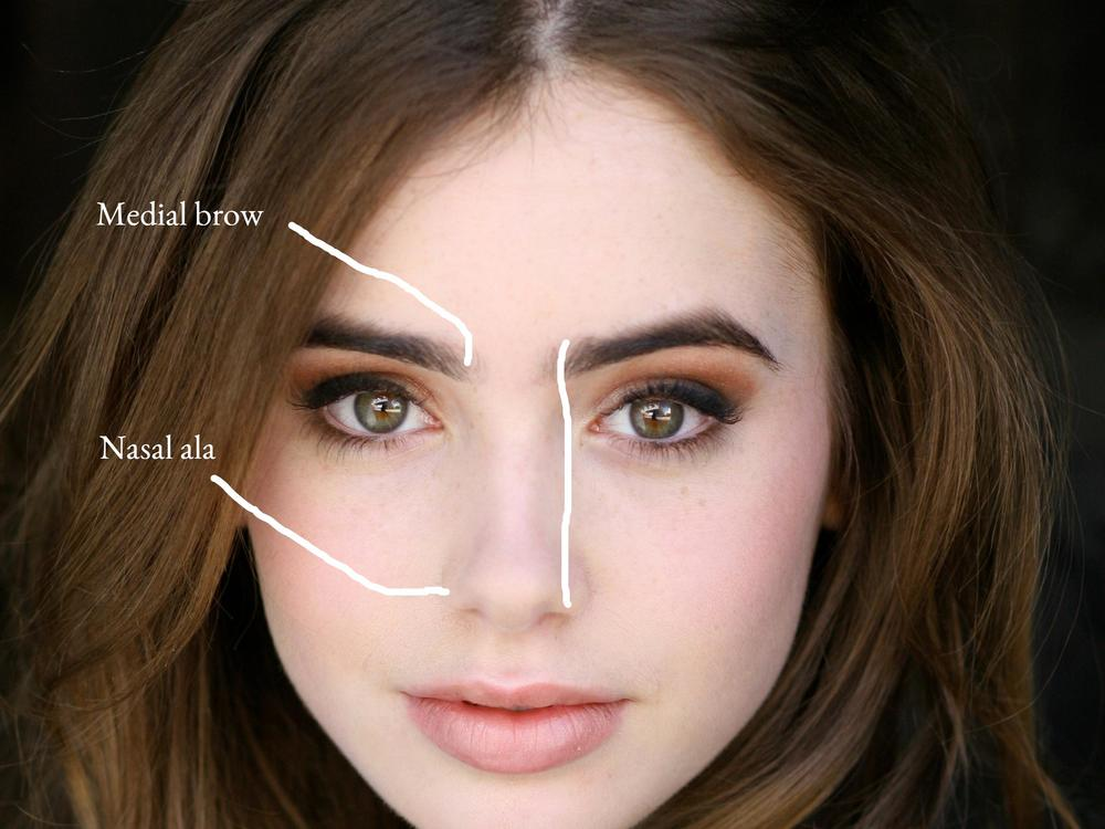 lily collins eyebrows plucked picture hot girls wallpaper