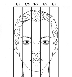 Ideal nasal width proportions