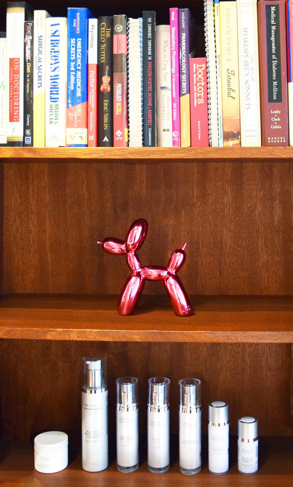 Jeff Koons's Balloon Dog