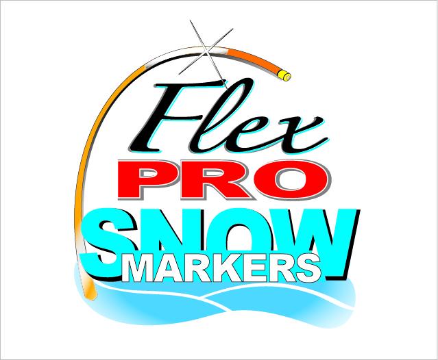 FlexPro.jpg