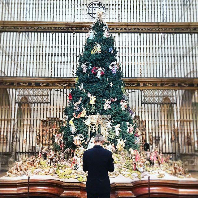 ✨🎅🏼🎄🙌🏻💫 #christmastimeishere #emptymet #christmastree #somanyangels