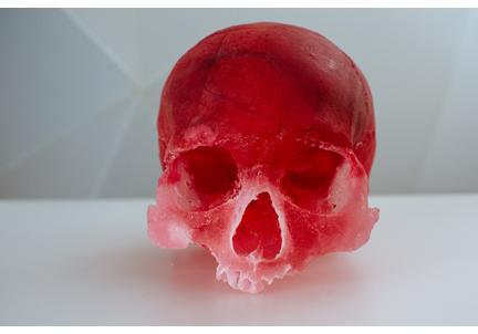 Ebersole.NoBS.skulls-9.jpg