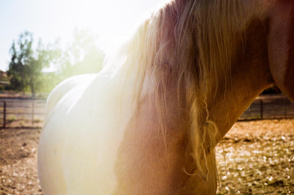 saddlerock ranch | MALIBU