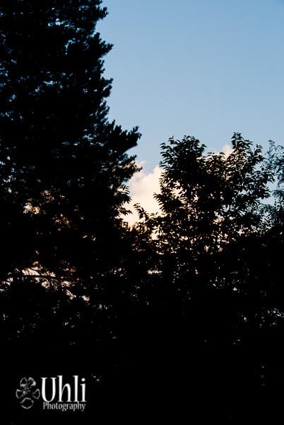 8.16.13 - Sunset