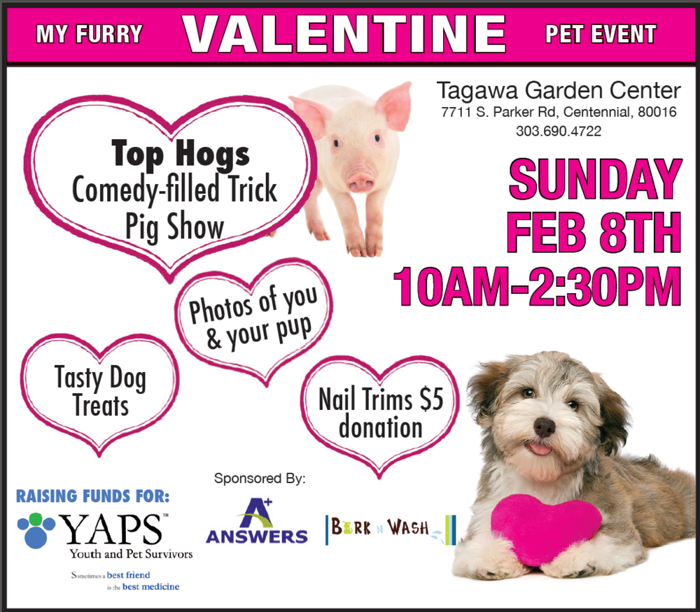Share The Love At The My Furry Valentine 2015 Event!